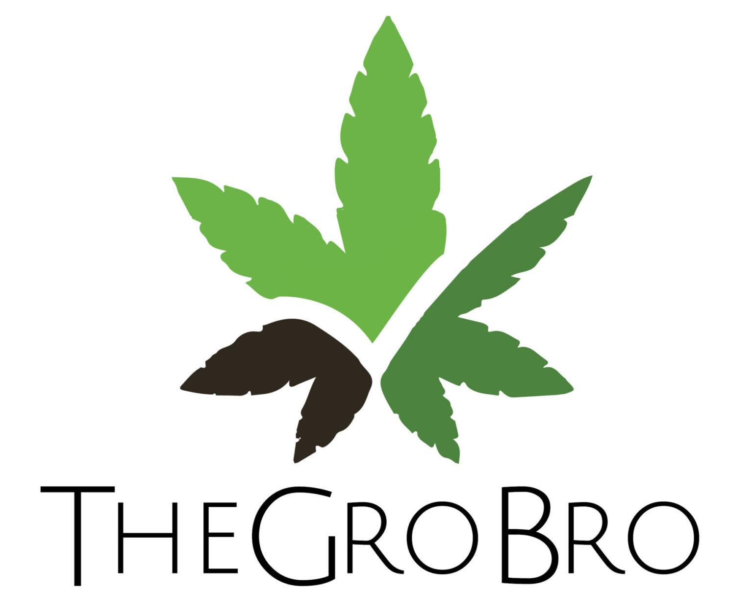 Show profile for thegrobroeza