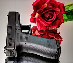 Glock221